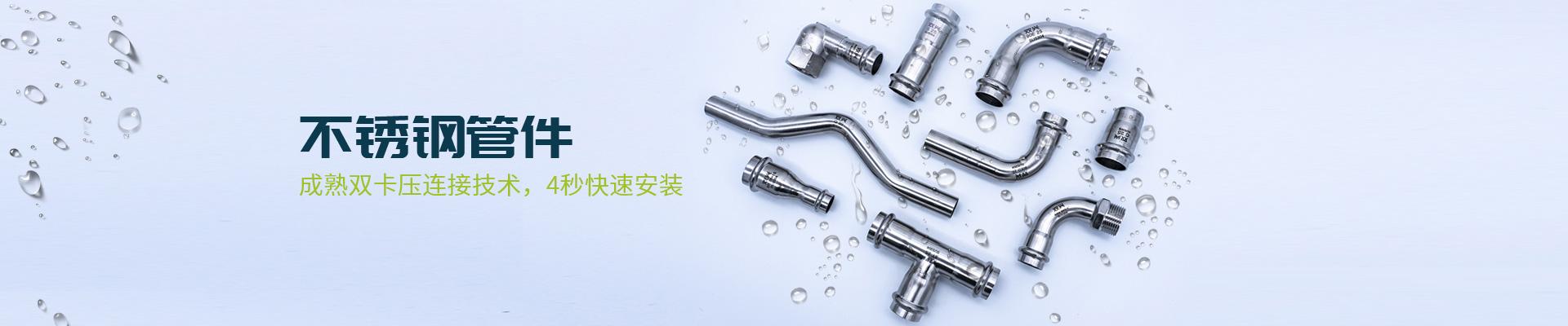 双兴-不锈钢管件